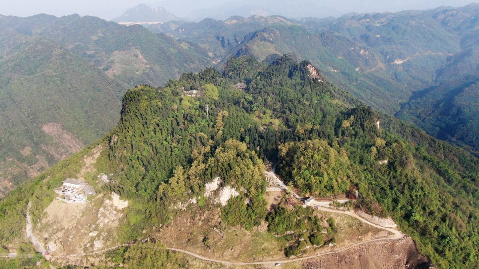 2 某市规划和自然资源局森林防火巡查.jpg